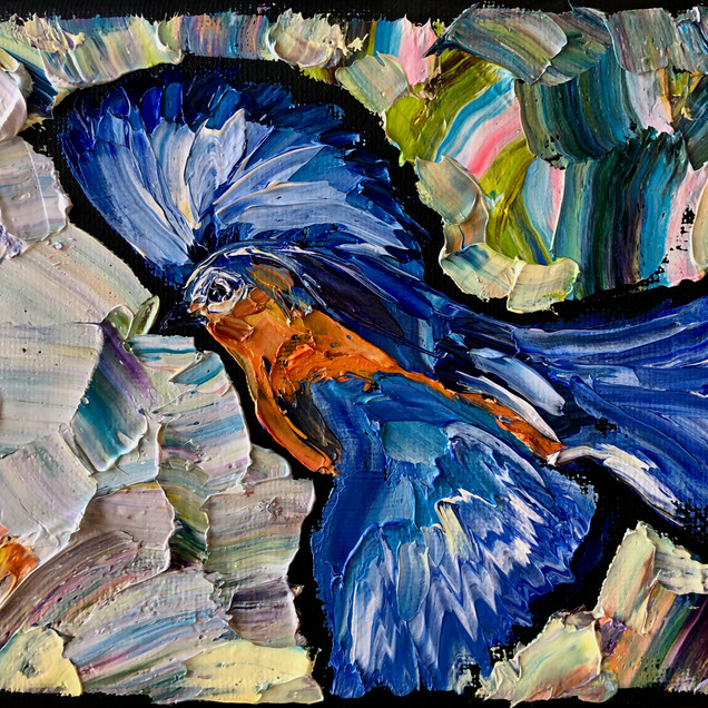 B191228A bluebird flying 5x7.jpeg