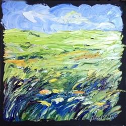 96.150617 grassy field 10x10