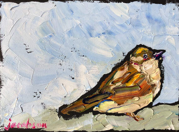 B191204 sparrow.jpeg