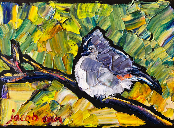 B191223 tufted titmouse 5x7.jpeg
