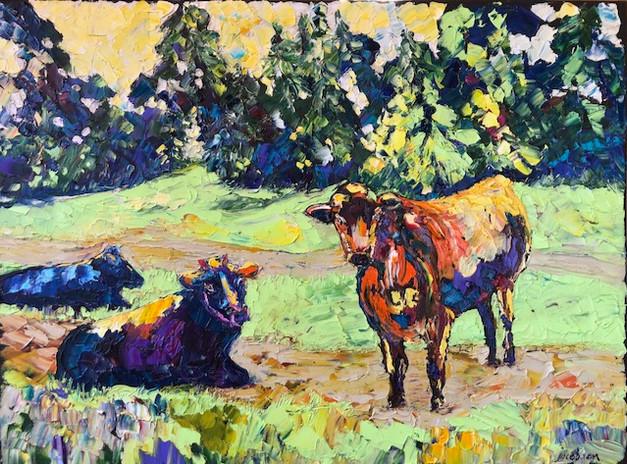 Saturday Morning, Three Cows