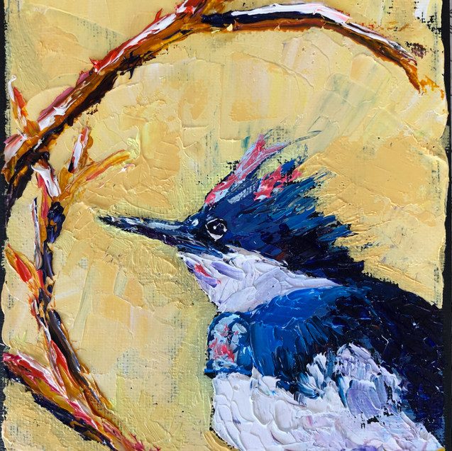 B 200406 B kingfisher 2.jpeg