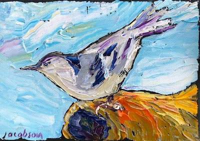 Nuthatch, Perched
