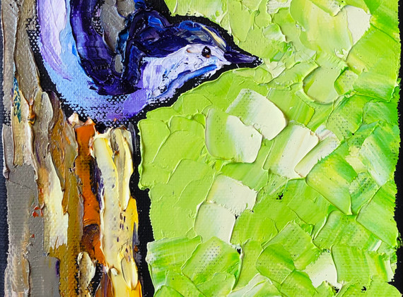 191207 nuthatch 6x12.jpeg
