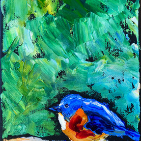B191202 bluebird .jpeg