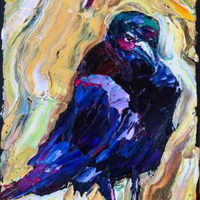 C200313 mad crow 5x7.jpeg
