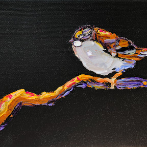 B 200406A white throated sparrow.jpeg