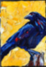 B191229 crow1.jpeg