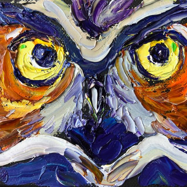 B 200320 owl eyes 4x6.jpeg