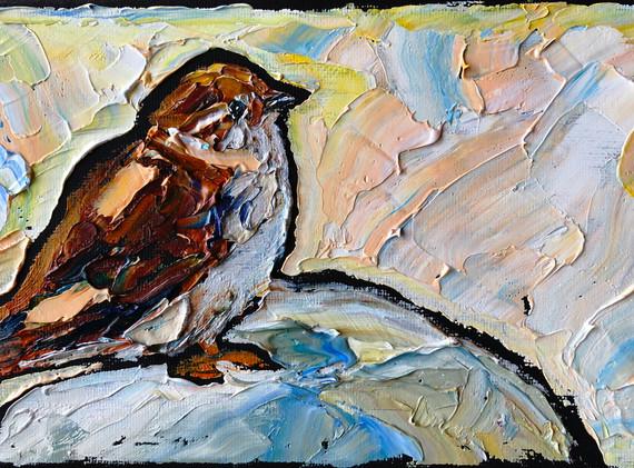 B191228 B sparrow 5x7.jpeg
