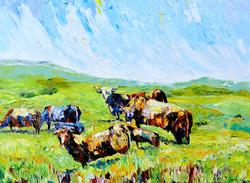 Big Cows