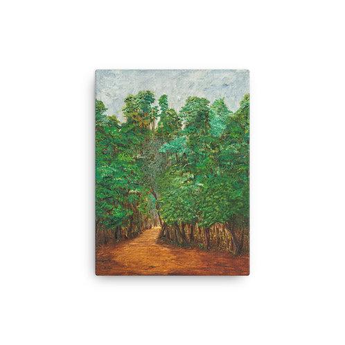 """12x16 """"Deep Forest"""""""
