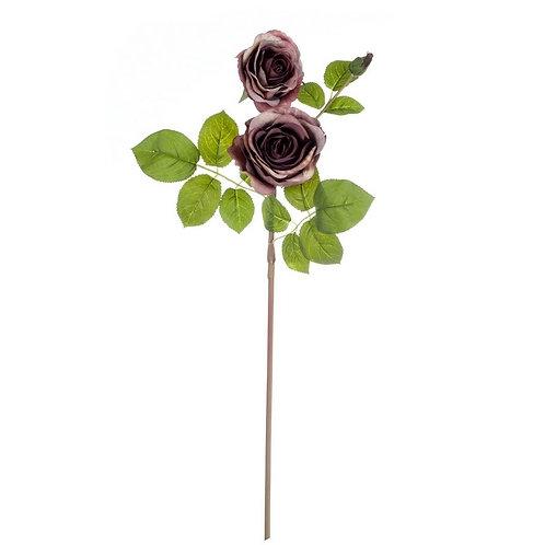 Il Roseto - Rose col. malva