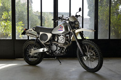 Motorieep 600 XLR Pd03 2