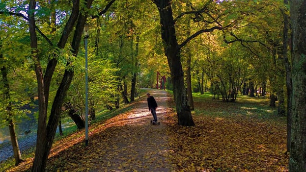 Epic Autumn