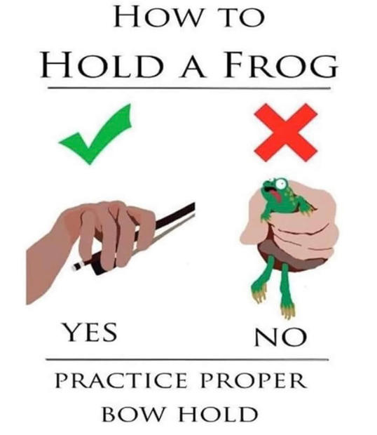 How To Hold A Frog