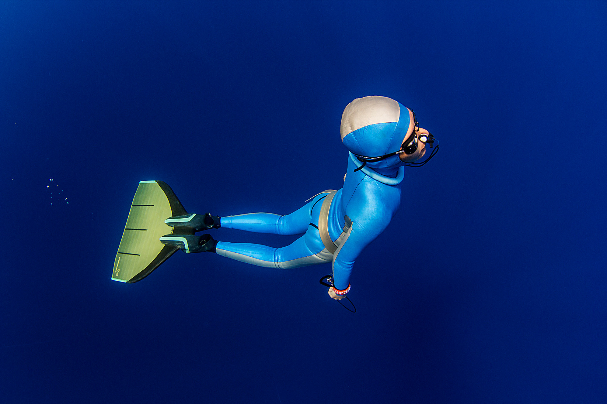 Free Diving For Beginners