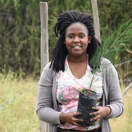 Meet Patricia. The African Environmentalist changing Africa one tree at a time.