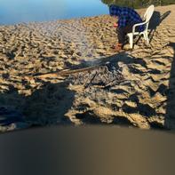 Beach visit.png