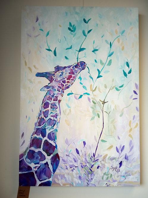 'Giraffe Eating Leaves'