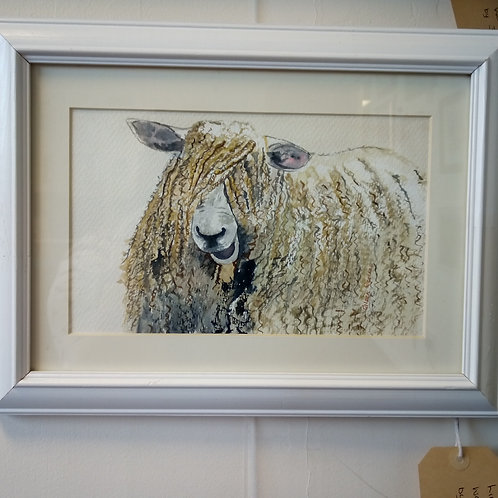 """""""Lincolnshire Long Wool"""" - Eileen Rounce"""