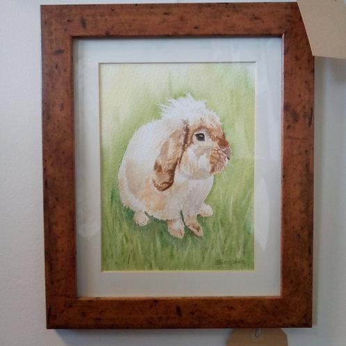 """Fluffy Bunny"" by Joanna Blackburn"