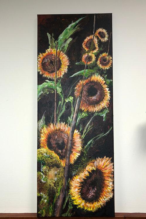 High Sunflowers