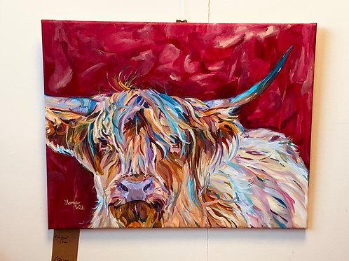 'Highland Cow'