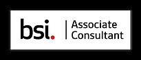 BSI ACP 2020 Logo.png