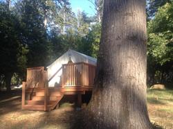 redwood decks Mendocino
