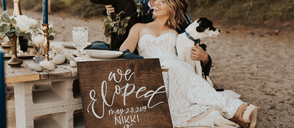 QUIET LAKE TAHOE ELOPEMENT WITH THEIR DOGS | Tahoe Elopement Photographer