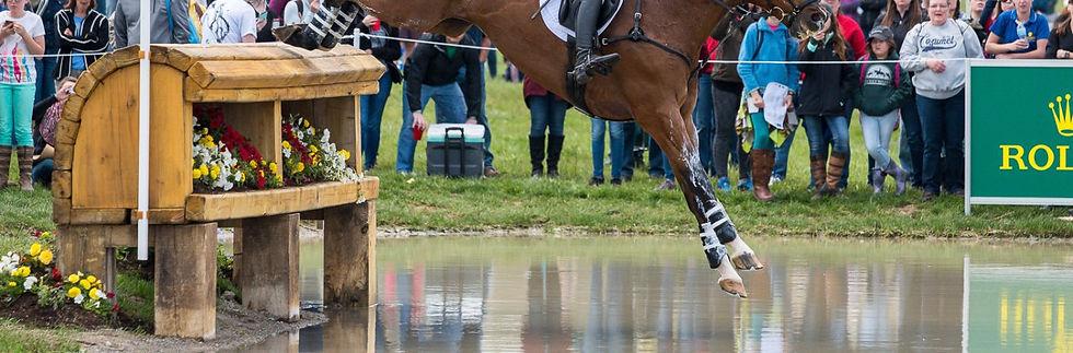 Horse jumping into lake.jpg