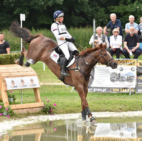 Syndicate horse KBIS Starburst with former rider Izzy Taylor