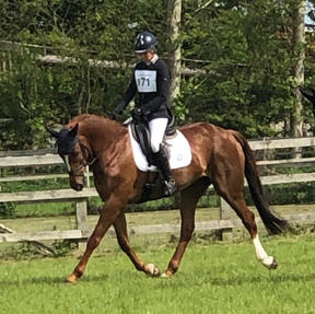 Georgie Campbell and Syndicate Horse KBIS Starburst