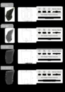Catalogo CKS 2020 grafica componenti11.p