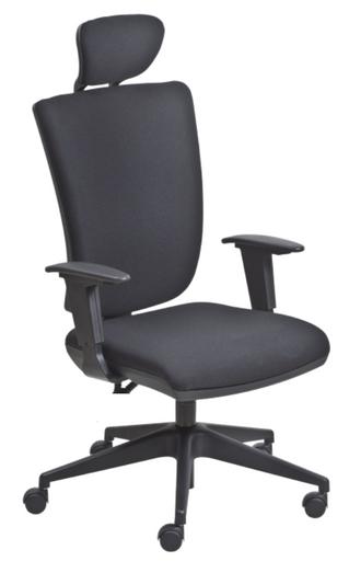 Comfort backsystem