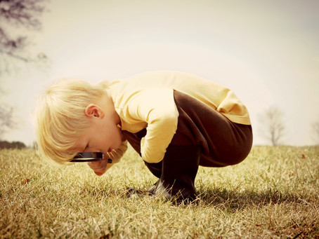 What I Learned From a Two-Year-Old--The Joy of Curiosity