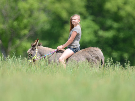 a girl and her donkey