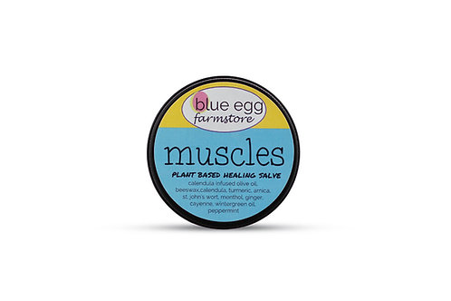 blue egg farmstore plant based medicinal salve for achy muscles arnica