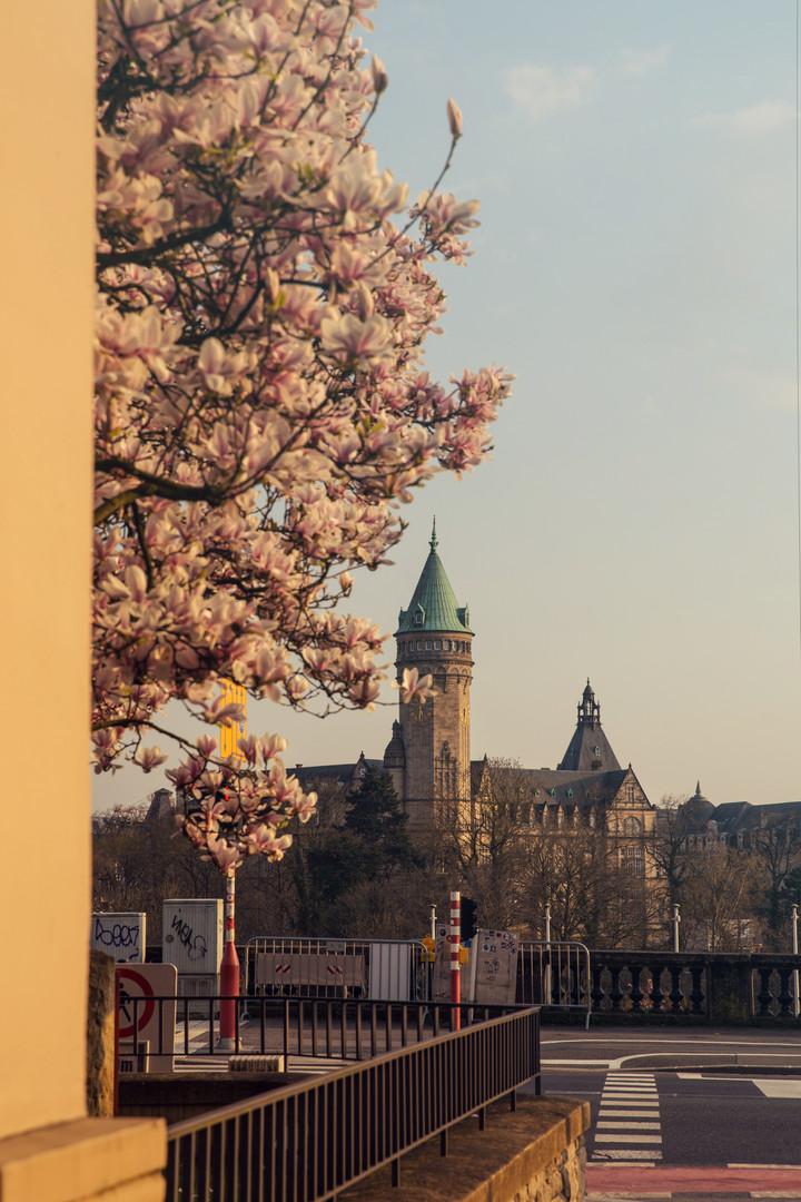 Spuerkeess spring Luxembourg city