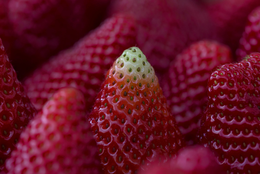 The tip of a strawberry