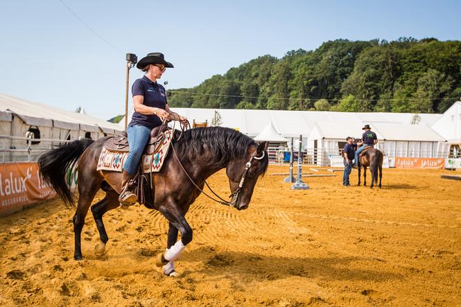 cowboy-quarterhorses