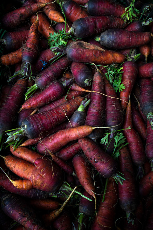 Tinted carrots