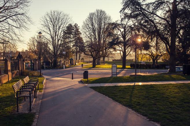 Sunrise at the park.jpg