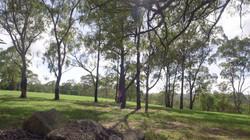 Brindabella Estate.jpg