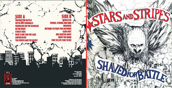 Stars and Stripes shaved for battle frontcover and backcover