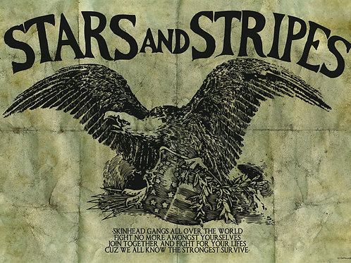 STARS AND STRIPES Shaved for Battle A3 Size Poster