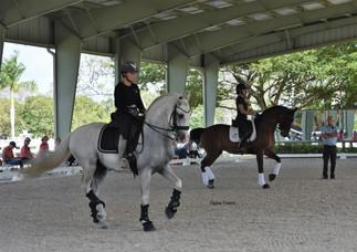 Grand Prix horses in Seminar with FEI 5* Judge Stephen Clarke