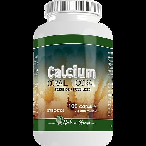 Calcium Corail | Herb-e-Concept | 100 capsules