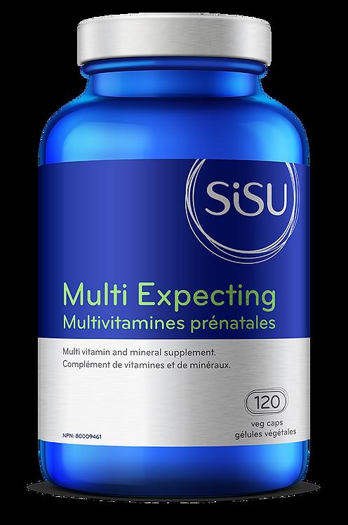 Multivitamines Prénatales | Sisu | 120 gélules végétales